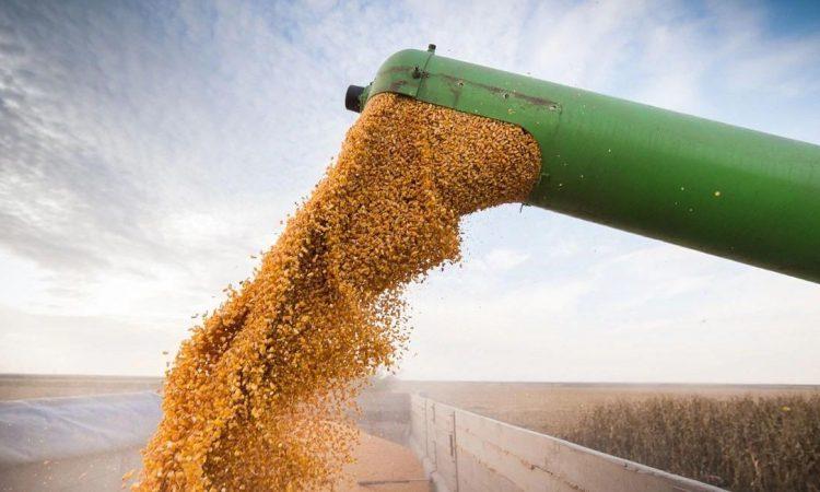 La inflación supera el crecimiento de la actividad económica en mayo — Argentina