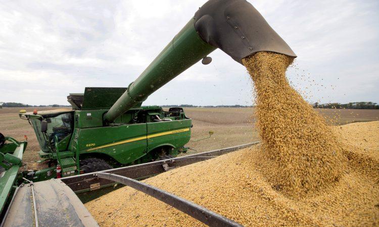 El Gobierno subiría tres puntos las retenciones a la soja